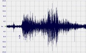 Nuova scossa di terremoto nel messinese