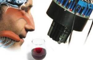 """Tumori, al Gemelli di Roma un """"naso"""" elettronico per scovarli"""