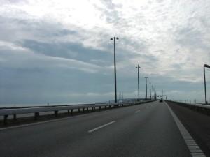 Norvegia: costruita a Oslo la prima autostrada dedicata alle api