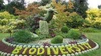 Giornata mondiale della biodiversità: 20% territorio italiano a rischio