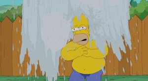 Ice Bucket Challenge: ci si mette anche Homer Simpson