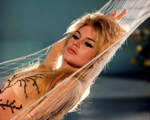 Brigitte Bardot, 80 anni tra star system e difesa degli animali