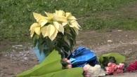 Loris Stival, alle 15 i funerali del piccolo a Santa Croce Camerina