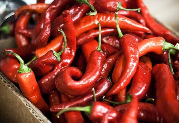 Nuova scoperta: il peperoncino può farti dimagrire