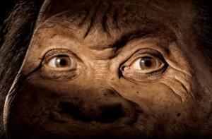Sudafrica: trovati i resti di una specie umana finora sconosciuta, l'Homo Naledi