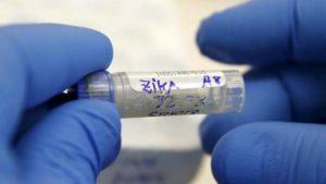 Usa, contagio virus Zika tra familiari: via di trasmissione diversa da quelle già note