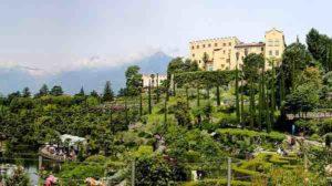Verde e natura per una vita felice: i benefici del giardinaggio